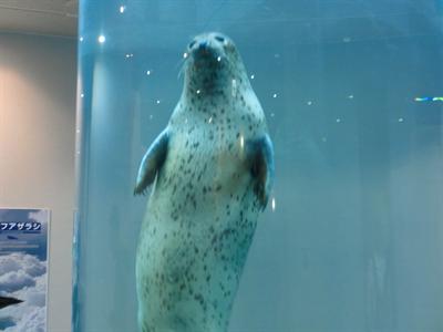 日本平動物園(とその周辺)に行ってきました!